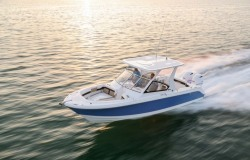 2020 - Edgewater Boats - 262 CX