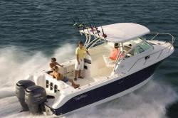 Edgewater Boats 265 EX Walkaround Boat