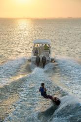 2017 - Grady-White Boats - Freedom 255