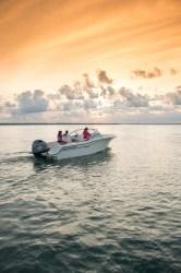2019 - Grady-White Boats - Freedom 215
