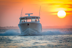 2019 - Grady-White Boats - Freedom 375