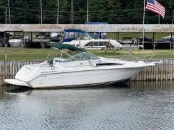1990 - Sea Ray Boats - 250 Sundancer