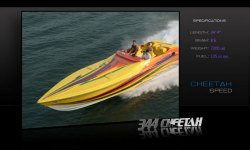 2011 - Hustler Powerboats - 344 Cheetah
