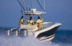 Hydra Sports Boats - 3300 CC