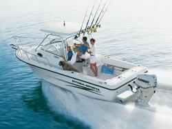 Hydra Sports Boats 230 WA 2007