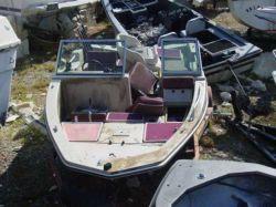 1980-procraft-1750-jim-epps-fish-n-ski-outboard-hull boat image