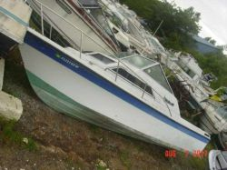1985 250 Coastal Walkaround Outboard Hull