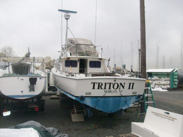 l_triton2