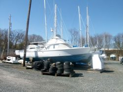 1979 - Bertram Yacht - 31 FB Cruiser