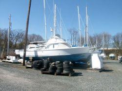 1979 -  - 31 FB Cruiser