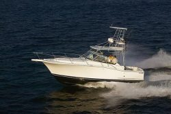2012 - Luhrs Boats - 31 Open IPS