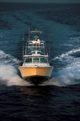 Luhrs Boats 38 Open Express Fisherman Boat