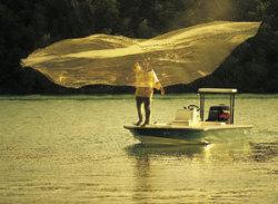 2012 - Maverick Boats - 21 Master Angler