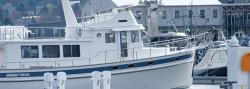 2019 - Nordic Tugs - Nordic Tug 54