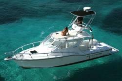 2011 - Ocean Express Boats - 336 Sport Cabin