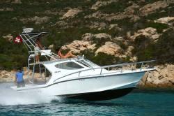 Ocean Master Marine - 336 Sport Cabin