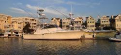 1999 Ocean Yachts 48 Express Charleston SC