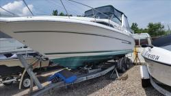 1992 Sea Ray Boats 290 DA1434 Philadelphia PA
