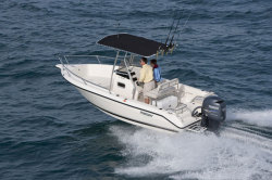 2014 - Pursuit Boats - C 200