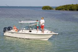 Pursuit Boats - OS 255