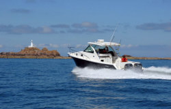 2010 - Pursuit Boats - OS 315 Offshore