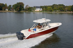 2010 - Pursuit Boats - S 310