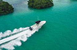 2011 - Pursuit Boats - C250 CC