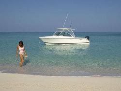 2012 - Pursuit Boats - DC265 DC