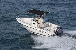 2013 - Pursuit Boats - C 200
