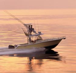 Pursuit Boats C 300 Fly Bridge Boat