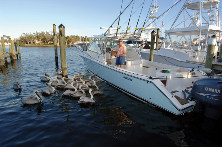 l_Pursuit_SF_345_Drummond_Sportfish_2007_AI-234804_II-11270459