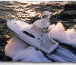 Rampage Yachts 45 Convertible Convertible Fishing Boat