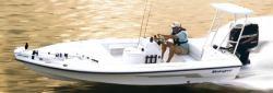 2009 - Ranger Boats AR - 191 Cayman
