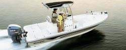 2015 - Ranger Boats AR - 2310 Bay Ranger