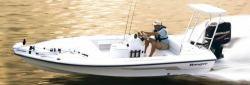 2008 - Ranger Boats AR - 191 Cayman