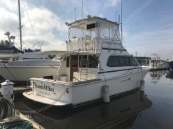 1988 - Egg Harbor Yachts - 41 Sport Fisherman