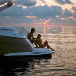 Regal Boats 3360 Window Express Cruiser Boat