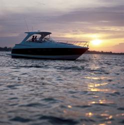 Regal Boats 4060 Commodore Cruiser Boat