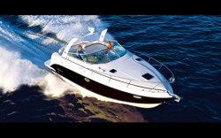 2009 - Rinker Boats - 300 Express Cruiser