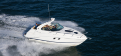 2011 - Rinker Boats - Express Cruiser 310