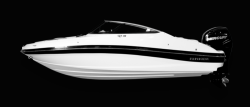 2018 - Rinker Boats - 19QX BR