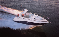 2008 - Rinker Boats - 350 Express Cruiser