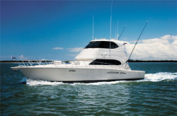 Riviera Marine 51 Enclosed Convertible Fishing Boat