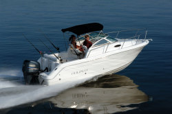 2009 - Robalo Boats - R225