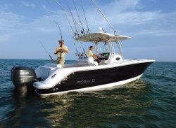 2009 - Robalo Boats - R300