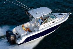 2010 - Robalo Boats - R265