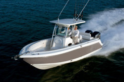 2010 - Robalo Boats - R260