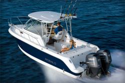 2011 - Robalo Boats - 245 WA