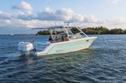 2019 - Robalo Boats - R317