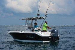 2020 - Robalo Boats - R202EX